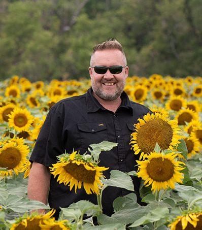 Farmer in field of sunflowers